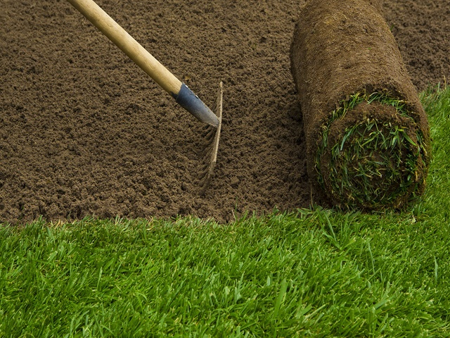 Turfing / Lawn Installers Hull